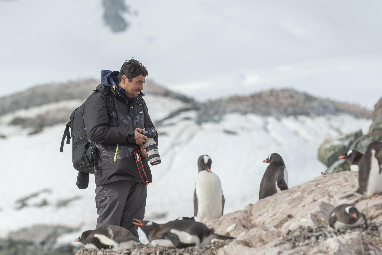 Egresso da Facopp fotografa natureza e vida animal na Antártida