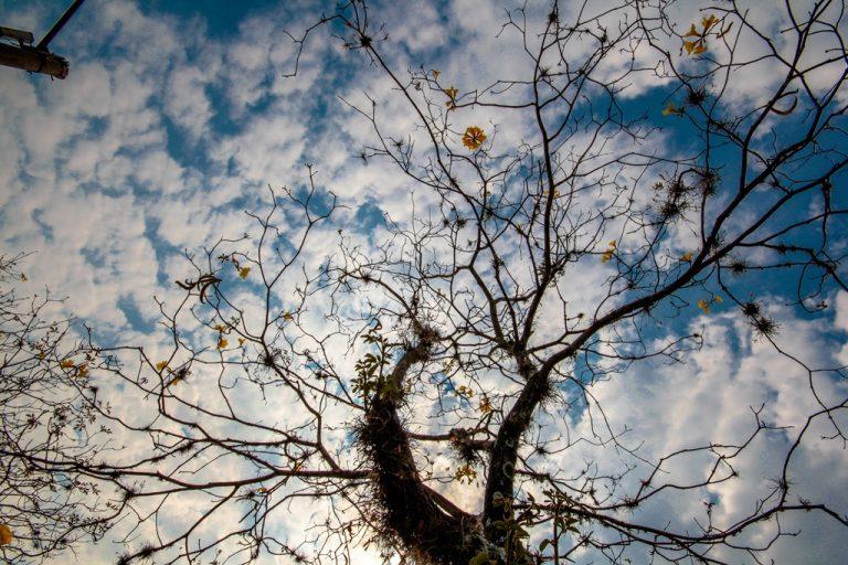 Fotos da exposição Projeto Unoeste Sustentável. Click: Marlene Reverte