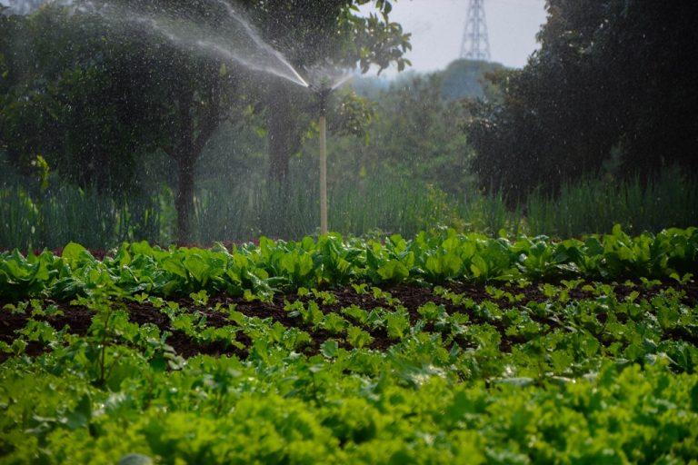 Fotos da exposição Projeto Unoeste Sustentável. Click: Larissa Akyiama