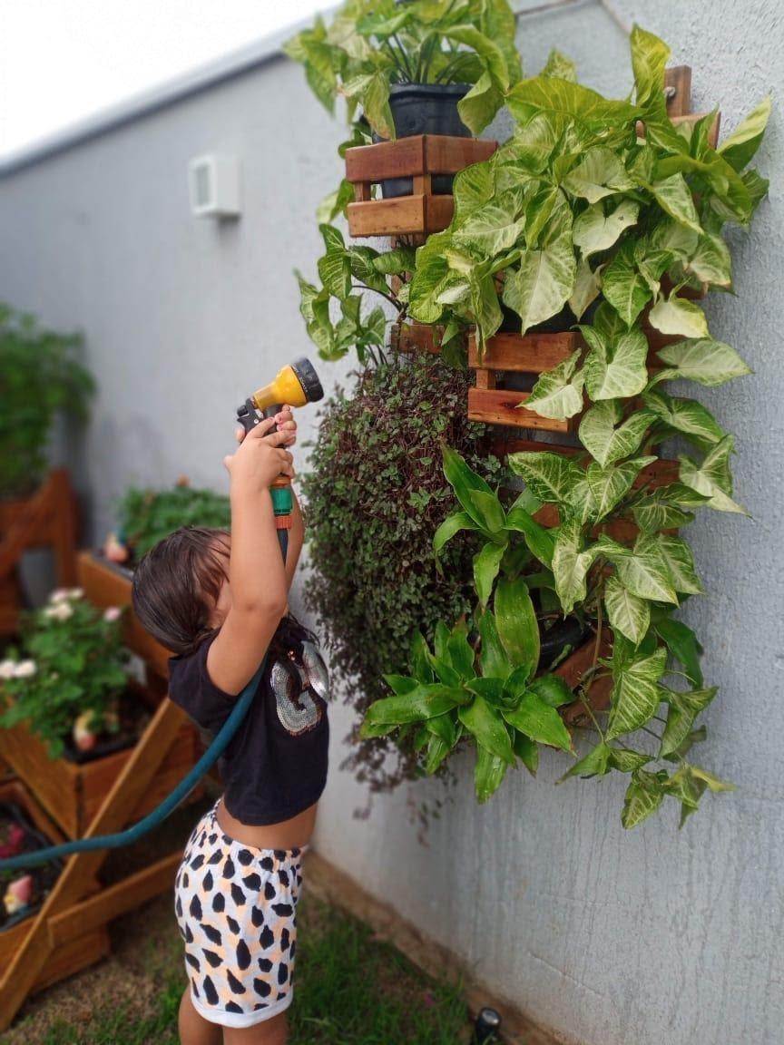 Cultivo de plantas anima rotina de membros da Escola de Comunicação na quarentena