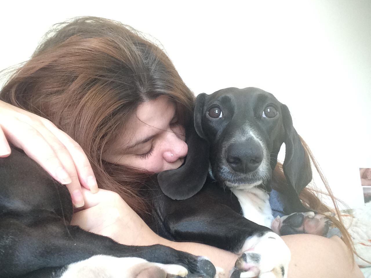 Adoção de cães muda a rotina de estudantes da Escola de Comunicação